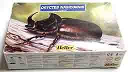 Heller ORYCTES NASICORNIS.jpg